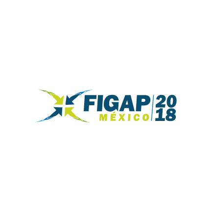Logotipo de FIGAP México 2018