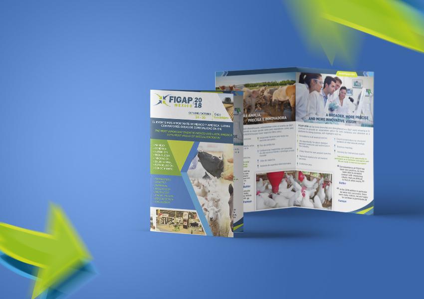 Diptico de FIGAP, Identidad Corporativa, Papelería Institucional, Diseño de marca